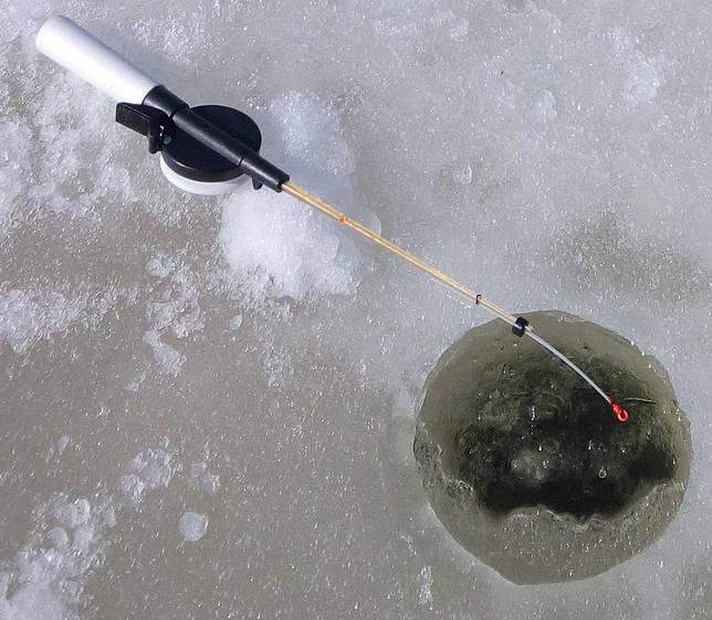 Ловля ротана по первому льду: где искать хищника и в какое время, снасти, приманки, тактика проводки